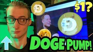 Dogecoin Pump Live! ️ ELON MUSK DOGE UPDATE ️ Cryptocurrency Podcast/Episode