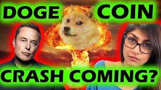 ️ DOGECOIN EMERGENCY VIDEO ️ DOGECOIN SUNDAY UPDATE !!! ARE WE ABOUT TO CRASH ???