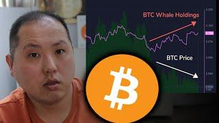 NO SURPRISE...BITCOIN WHALES ARE BUYING