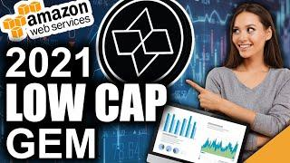 Low Cap Gem Decentralizing Amazon (Top 2021 Crypto)