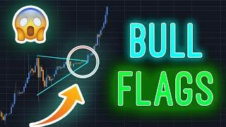 BULLFLAGS Fully Explained in 150s | MOST POWERFUL BTC/CRYPTO TOOL!!!!!!