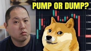 IS DOGECOIN GOING TO PUMP OR DUMP??