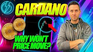 THE TRUTH ABOUT CARDANO PRICE! (Must Watch For ADA Holders)