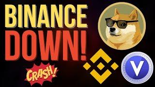 BINANCE & VOYAGER DOWN DUE TO DOGECOIN DEMAND! (What To Expect Moving Forward)