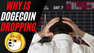 WHY IS DOGECOIN DROPPING TODAY | IS DOGECOIN DEAD JUNE 2021 | DOGECOIN UPDATE