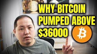 Why Bitcoin Pumped Above $36,000 | Bill Miller Loves BTC
