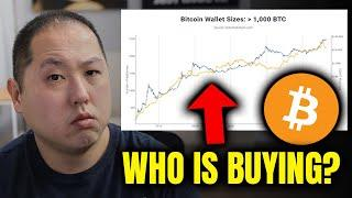 WHO IS BUYING BITCOIN? RETAIL OR WHALES?