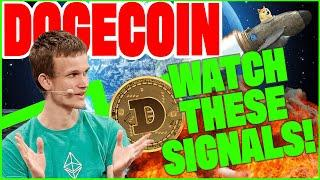 What's Slowing Dogecoin Update Rollouts!   Defi to Change the World!   Crypto vs. Rocks!