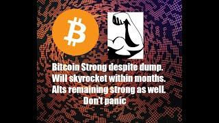 Bitcoin Strong Despite Dump. Will Skyrocket Within Months. Alt Coins Looking Good As Well.Just HODL.