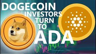 FROM DOGECOIN TO CARDANO