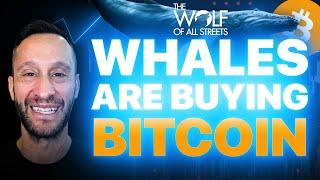 WHALES ARE BUYING BITCOIN AGAIN | SHOULD YOU?