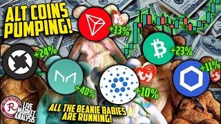 BITCOIN LIVE : ZRX, MKR, ETH, LTC, BCH ON THE MOVE. ALTCOIN FEVER