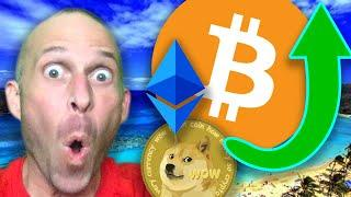 CRYPTO EXPERT (not me..) REVEALS ALTCOIN CRASH BULL RUN STRATEGY!!!!! [is this your FIRST bull run?]