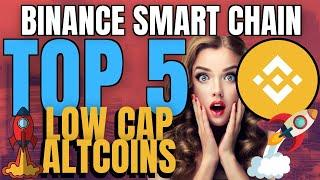 Top 5 Low Cap Coins on BSC | Binance Smart Chain