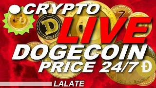 CRYPTO LIVE NEWS DOGECOIN LIVE STREAM NOW | DOGECOIN LIVE CHART LIVE STOCK PRICE BEST COIN TO BUY!!
