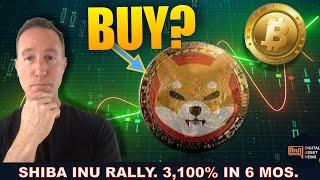 WHY SHIBA INU IS PUMPING. SHOULD I BUY THIS RAGING CRYPTO?