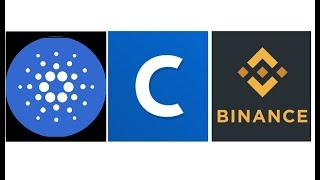 Cardano & Silicon Valley; Coinbase Gets VISA Approval; Binance PAUSES Everything; Bloomberg
