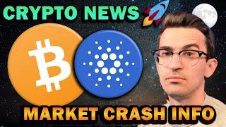 CRYPTO MARKET CRASH NOT OVER?? Why I'm Still Bullish