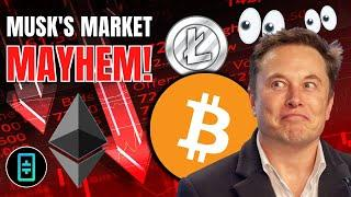 Did Elon Musk Just CRASH Crypto!? THETA, Tesla, Crypto.com, Chainlink, Elrond + Uniswap V3 Updates