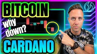 WHY BITCOIN & CARDANO PRICE ARE FALLING (Cold Hard Truth...)