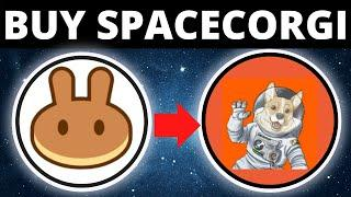 How To Buy Space Corgi Coin On Trust Wallet & PancakeSwap