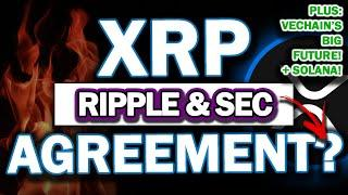 MAJOR RIPPLE XRP UPDATE! RIPPLE & SEC AGREES? Conspiracy's as to WHY! Big Vechain PATENT News!