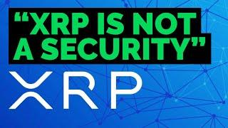 """SEC v. Ripple / XRP Discovery Hearing, Former GOV't Official says """"XRP IS NOT..."""
