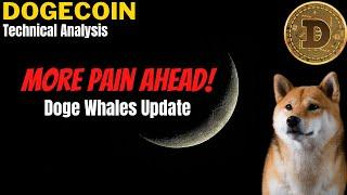 WILL THE PRICE OF DOGECOIN CONTINUE TO DROP IN THE NEAR TERM? Doge Whales Dumping Dogecoin Update.