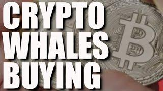Can Bitcoin Recover?, Binance Whales, 1$ Billion Fund, Coinbase NFT, No Crypto Ban & Well Duhh