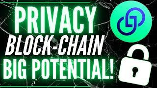 New SMALL CAP Privacy BLOCKCHAIN with BIG Future - This CARDANO RIVAL is JUST BEGINNING - Partisia