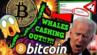URGENT!!!! 55,376 BITCOIN MOVED!!!!!! What's REALLY Happening? [Don't Make THIS Mistake]
