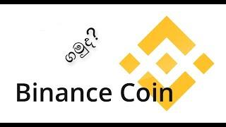 BNB To $1000! Binance Coin To Continue Exploding  2021 - Sinhala Best Crypto Investment