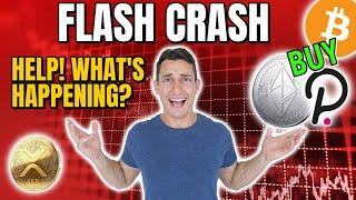 WARNING: CRYPTO FLASH CRASH! Your GUIDE to What Happens Next! PLUS What to Buy & How to Prepare!