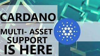 CARDANO ANNOUNCEMENT: Multi Asset Support UPGRADE