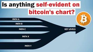Bitcoin: The Situation Right Now (is anything self-evident?)